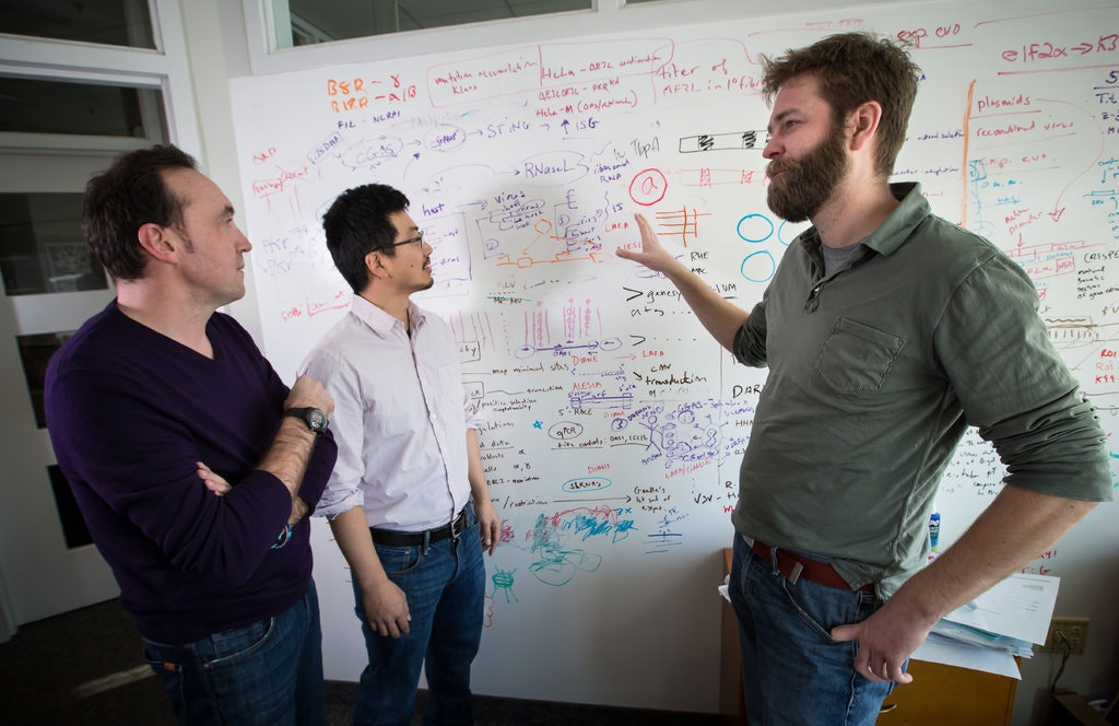 Three men in front of white board