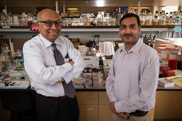 Sankar Swaminathan, MD, and Dinesh Verma, PhD.
